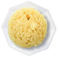 cake-lemon